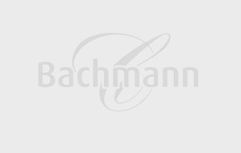 ap ro macaron vanille bestellen confiserie bachmann luzern. Black Bedroom Furniture Sets. Home Design Ideas